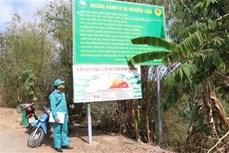 Vườn Quốc gia Tràm Chim chủ động phòng cháy, chữa cháy rừng trong mùa khô