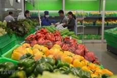 泰国对越南蔬果的需求巨大