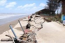 Biến đổi khí hậu: Đầu tư 260 tỷ đồng xây dựng công trình bảo vệ bờ sông, bờ biển
