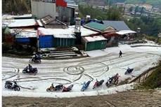 越南各省筹集资源开展灾后重建工作