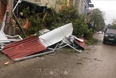 Yên Bái lốc xoáy kèm mưa đá gây thiệt hại 18 tỉ đồng