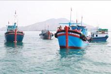 Chính phủ ban hành Kế hoạch tổng thể phát triển bền vững kinh tế biển đến năm 2030