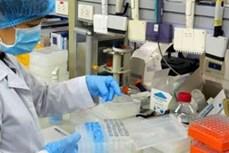 越南政府总理同意向民间企业订购新冠病毒检测服务的提议