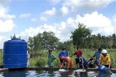 Hỗ trợ 530 tỷ đồng cho 8 tỉnh Đồng bằng sông Cửu Long phòng, chống hạn hán, xâm nhập mặn