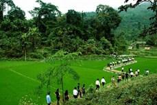 """Huyện miền núi Định Hóa không còn thôn bản """"trắng"""" đảng viên và chi bộ đảng"""