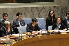 越南尽早完成联合国安理会轮值主席国任期报告