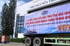 越南Vinamilk公司向中国出口首批炼奶