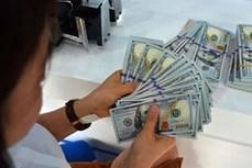 4月21日越盾对美元汇率中间价上调8越盾