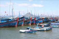 Lập quy hoạch bảo vệ và khai thác nguồn lợi thủy sản thời kỳ 2021-2030, tầm nhìn đến năm 2050