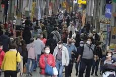 Nhật Bản phát hiện chất có thể sử dụng để bào chế thuốc chữa COVID-19