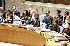 越南为维护地区和世界和平、稳定、合作与发展做出积极贡献