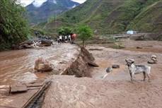 Hội Chữ thập đỏ Việt Nam cứu trợ khẩn cấp các tỉnh bị ảnh hưởng mưa đá, dông lốc