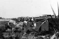 越南国家统一45周年:美国反战歌曲助力反对越南战争