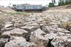 Xu thế xâm nhập mặn tại Đồng bằng sông Cửu Long tăng dần và đạt cao nhất từ ngày 8-13/4