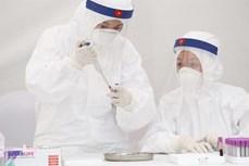 预计今日胡志明市芹椰新冠肺炎患者治疗医院将公布两名患者治愈