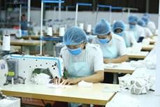 越南纺织服装集中开发潜在市场