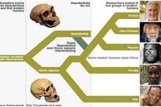 Bằng chứng mới về thời điểm người hiện đại xuất hiện tại châu Âu