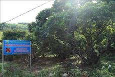 Bắc Giang thực hiện hiệu quả các chính sách, nâng cao đời sống vùng đồng bào dân tộc
