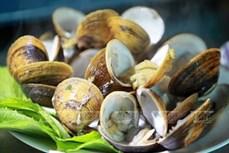 Khai thác giá trị văn hóa ẩm thực gắn với phát triển du lịch - nhìn từ Nam Bộ (Bài cuối)