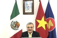 2020东盟轮值主席年:东盟与墨西哥分享防控新冠肺炎疫情经验做法