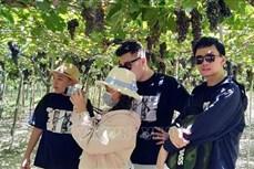 Tín hiệu khởi sắc của ngành Du lịch Ninh Thuận