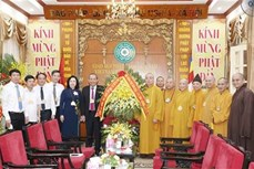 越南政府常务副总理张和平祝贺佛诞大典