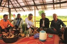 Lễ hội xuống đồng của người Khmer ở Bình Phước