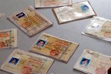 Lai Châu phát hiện gần 220 bằng lái xe giả