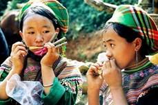 Đàn môi của người Mông