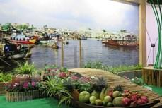 2021年元旦三天假期:芹苴市接待游客量达2.85万人次