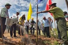 政府总理阮春福致信赞扬槟椥省积极响应植树活动