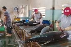 越南金枪鱼出口增长3到4倍