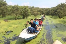 越南安江省力争至2025年接待游客人数达4200万人次的目标