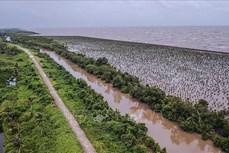 推动九龙江三角洲地区可持续发展和适应气候变化