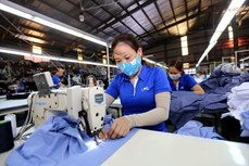 RCEP:越南企业的机遇与挑战
