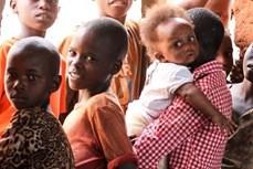 越南与安理会:越南强调保护平民免受冲突引起饥饿的必要性