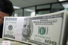 今日越盾对美元汇率中间价上调5越盾