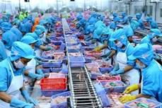惠誉国际评级将越南评级前景展望由稳定上调至正面
