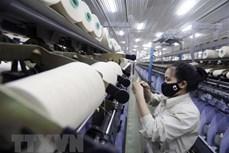 印度对越南人造纤维免征反倾销税