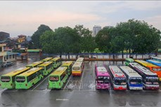 5月21日0时起北江省暂停客运运营活动
