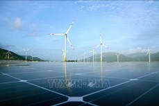 能源院:未来5年越南可再生能源开发利用水平或将下降
