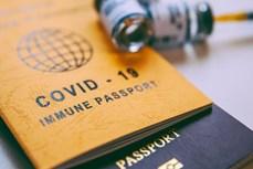 """试点使用""""疫苗护照""""——为越南旅游业复苏点燃希望"""
