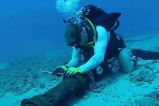 AAG海底光缆修复完成 越南到国外网速恢复正常