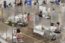 新冠肺炎疫情:河内市为新冠疫苗大规模接种工作做好准备