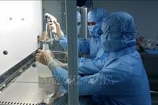 越南逐步自主研制新冠疫苗