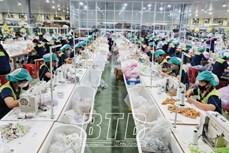 太平省努力实现经济增长目标