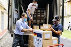 越南接受由德国通过COVAX机制援助的85.2万剂新冠疫苗