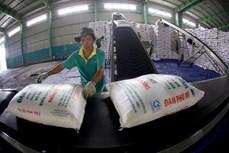 2021年前8月越南化肥对外出口量超过80万吨