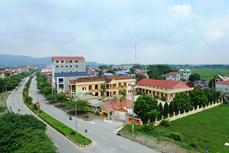 Sóc Sơn nỗ lực cán đích huyện nông thôn mới