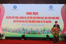 Khai mạc sự kiện kết nối sản phẩm OCOP, đặc sản vùng miền gắn với văn hóa các tỉnh miền Trung và Tây Nguyên